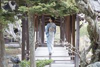 木橋を歩く着物姿の女性