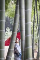 竹林を歩く着物姿の女性 11023018816| 写真素材・ストックフォト・画像・イラスト素材|アマナイメージズ