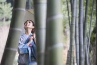 竹林を歩く着物姿の女性 11023018817| 写真素材・ストックフォト・画像・イラスト素材|アマナイメージズ