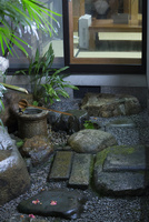 中庭 11023018984| 写真素材・ストックフォト・画像・イラスト素材|アマナイメージズ