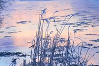 冬の風景 11023020561| 写真素材・ストックフォト・画像・イラスト素材|アマナイメージズ