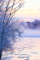 冬の風景 11023020562| 写真素材・ストックフォト・画像・イラスト素材|アマナイメージズ