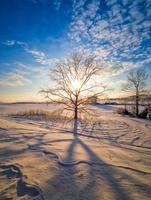 冬の風景 11023020577| 写真素材・ストックフォト・画像・イラスト素材|アマナイメージズ