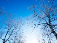 冬の風景 11023020598| 写真素材・ストックフォト・画像・イラスト素材|アマナイメージズ