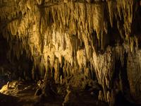 鍾乳洞 11023021085| 写真素材・ストックフォト・画像・イラスト素材|アマナイメージズ