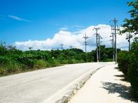 沖縄の道 11023021091| 写真素材・ストックフォト・画像・イラスト素材|アマナイメージズ