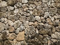 竹富島の石垣 11023021259| 写真素材・ストックフォト・画像・イラスト素材|アマナイメージズ