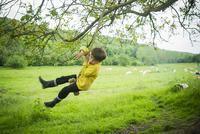 Boy having fun on rope swing