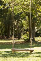 Tree swing in backyard