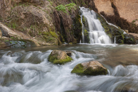 Stream flowing over rocks in Zion National Park, Utah, USA