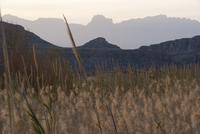 Big Bend National Park, Texas, USA 11025010548| 写真素材・ストックフォト・画像・イラスト素材|アマナイメージズ