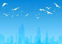 街並みと白い鳥