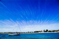 晴天のロットネス島 11026005925| 写真素材・ストックフォト・画像・イラスト素材|アマナイメージズ