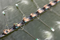 Rowing crew in boat