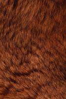 texture rust blur