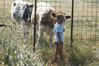 Boy standing near fence