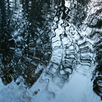 Ripples on surface of pond