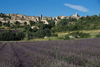Village of Aurel behind lavender fields