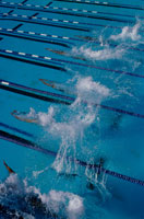 Swimmers in lanes racing in pool