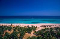 elevated view of beach resort