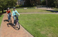 Friends riding bicycles on brick path