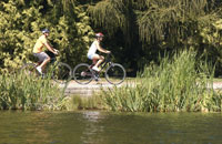Friends riding bicycles by pond