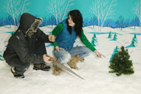 Couple chopping down Christmas tree