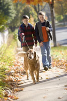 Two boys walking a dog