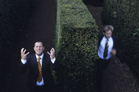 Two businessmen lost in hedge maze