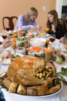Close-up of Christmas turkey 11029003184| 写真素材・ストックフォト・画像・イラスト素材|アマナイメージズ