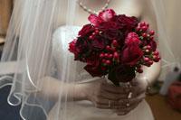 Close-up of bride holding bouquet 11029005529| 写真素材・ストックフォト・画像・イラスト素材|アマナイメージズ