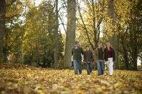 Family walking through park in autumn 11029005602| 写真素材・ストックフォト・画像・イラスト素材|アマナイメージズ