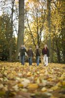 Family walking through park in autumn 11029005604| 写真素材・ストックフォト・画像・イラスト素材|アマナイメージズ