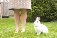 Young woman and rabbit sitting in lawn 11029008813| 写真素材・ストックフォト・画像・イラスト素材|アマナイメージズ