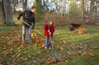 Father and daughter raking leaves