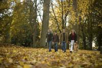 Family walking through park in autumn 11029009437| 写真素材・ストックフォト・画像・イラスト素材|アマナイメージズ