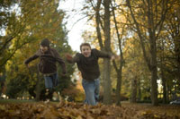 Brothers jumping into pile of leaves 11029009438| 写真素材・ストックフォト・画像・イラスト素材|アマナイメージズ