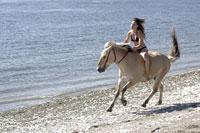 Woman riding a horse on beach 11029010231| 写真素材・ストックフォト・画像・イラスト素材|アマナイメージズ