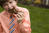 Boy eating chocolate Easter bunny