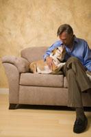 Mature man petting English bulldog 11029010474| 写真素材・ストックフォト・画像・イラスト素材|アマナイメージズ