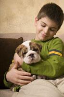 Young boy holding English bulldog puppy