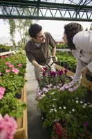 Couple shopping at plant nursery 11029011277| 写真素材・ストックフォト・画像・イラスト素材|アマナイメージズ