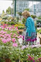 Woman browsing nursery for plants 11029011286| 写真素材・ストックフォト・画像・イラスト素材|アマナイメージズ