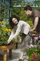 Couple shopping at plant nursery 11029011288| 写真素材・ストックフォト・画像・イラスト素材|アマナイメージズ