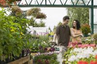 Couple shopping at plant nursery 11029011289| 写真素材・ストックフォト・画像・イラスト素材|アマナイメージズ