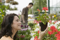 Close up of woman looking at plants