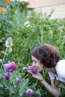 Woman smelling chrysanthemum flower 11029013238| 写真素材・ストックフォト・画像・イラスト素材|アマナイメージズ