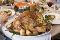 Close-up of Christmas turkey 11029014239| 写真素材・ストックフォト・画像・イラスト素材|アマナイメージズ