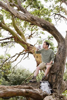 Man drinking water in tree