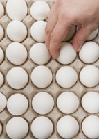 Hand choosing egg from carton